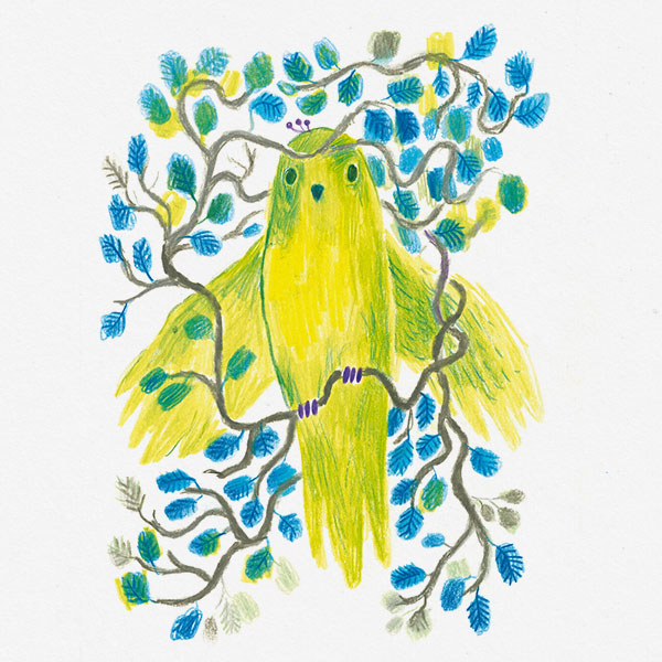 Drawing of a yellow parrot in a tree