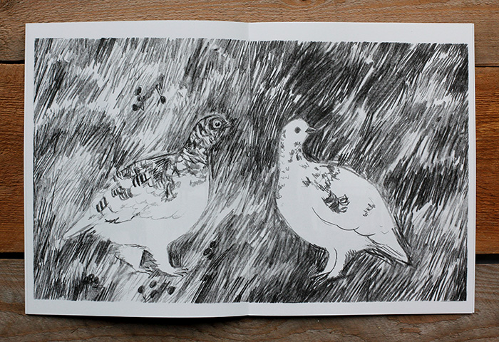 A spread with rock ptarmigans from the art zine Distant Island