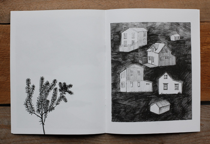 A spread with a plant and a village from the art zine Distant Island