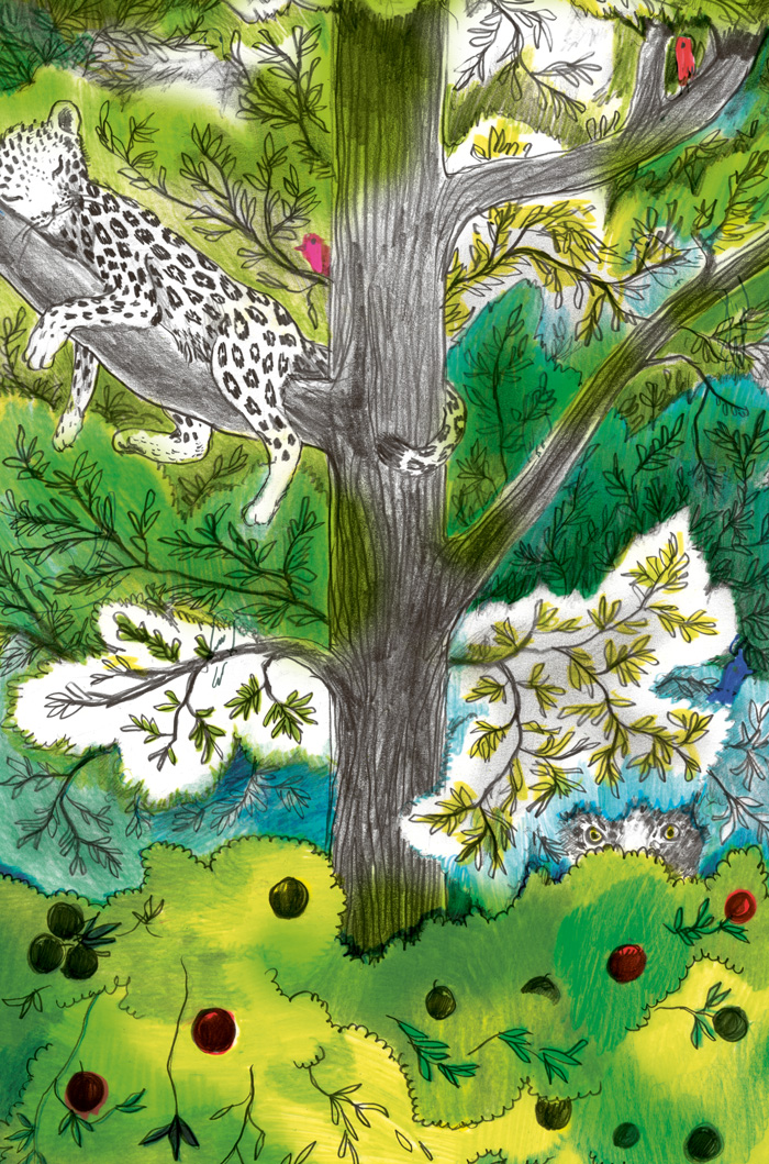 Color drawing of birds and leopards on a tree