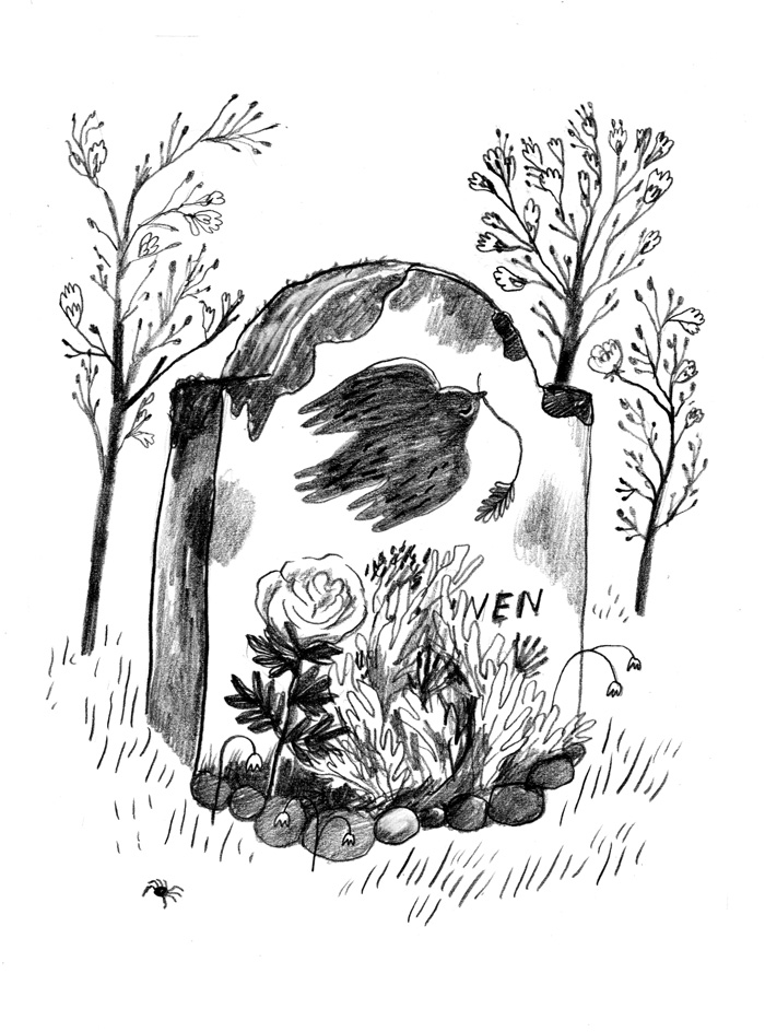 Black and white drawing of graveyard for Tufunus children's book