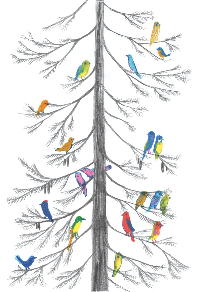 Color drawing of birds sitting on a tree